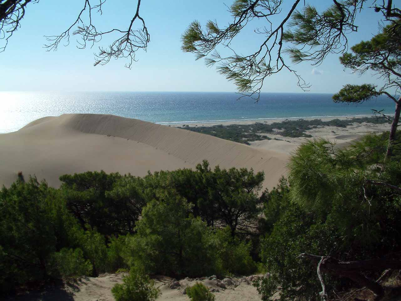 SA. Patara dunes