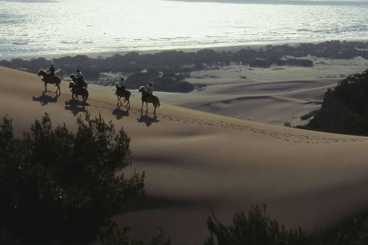 riding on dunes